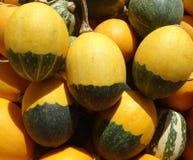 Двойное яичко гоблина цвета Стоковые Фото