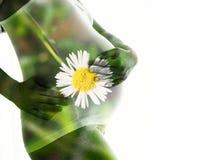 Двойное exproure беременной женщины и цветка изолированных на белой предпосылке стоковые фотографии rf