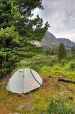 Двойной легковес резвится шатер под большой сибирской сосной Стоковое Изображение RF