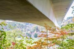 Двойной мост свода на бульваре трассировки Natchez Стоковое Фото