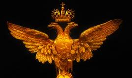 Двойной орел стоковая фотография rf