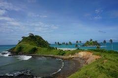 Двойной пляж с пальмами Стоковое Изображение