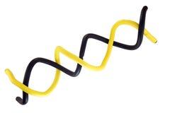 двойной helix стоковая фотография