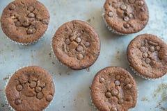 Двойные булочки обломока шоколада Стоковые Фотографии RF
