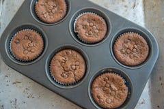 Двойные булочки обломока шоколада Стоковое Фото