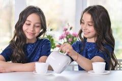Двойные девушки выпивая чай Стоковое фото RF