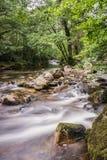 Двойные реки Стоковое Фото