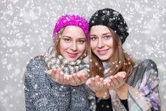 Двойные сестры одетые в теплых одеждах зимы Стоковые Изображения