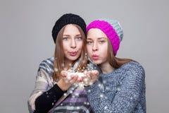 Двойные сестры одетые в теплых одеждах зимы Стоковые Фотографии RF
