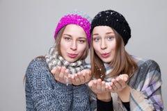 Двойные сестры одетые в теплых одеждах зимы Стоковое Изображение