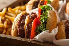 Двойные Cheeseburgers и фраи француза Стоковое Изображение