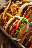 Двойные Cheeseburgers и фраи француза Стоковое Изображение RF
