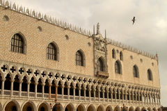 Дворец Венеция дожа стоковое изображение rf