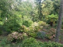 Дворец в дворце деревьев зеленого цвета sintra Стоковая Фотография
