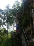 Дворец в дворце деревьев зеленого цвета sintra Стоковое фото RF