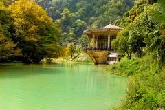 Дворец в джунглях Стоковое фото RF