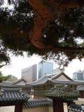 Дворец Кореи Стоковые Изображения