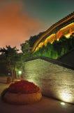 дворец ночи Стоковое Изображение RF