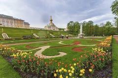 Дворец Санкт-Петербург Россия Peterhof Стоковые Изображения RF