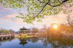 Дворец Gyeongbokgung весной, Южная Корея Стоковые Изображения