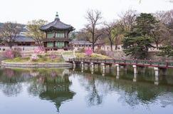 Дворец Gyeongbokgung весной Стоковое фото RF