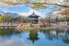 Дворец Gyeongbokgung весной Стоковая Фотография RF
