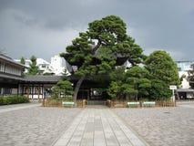 Двор буддийского виска в токио Стоковая Фотография