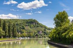 Двор вина на стороне реки Рейна стоковое изображение rf