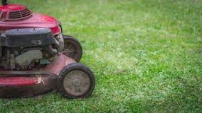 Двор подвергает оборудование механической обработке газонокосилки стоковые фотографии rf