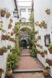 Двор украшенный с гераниумами, Cordoba, Испания стоковая фотография