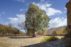 Двор церков tis Asinou Panagia Nikitari Кипр стоковые изображения