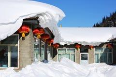Двухмодовая ферма леса в провинции Хэйлунцзяна - деревне снега Стоковые Фото