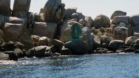 Дева мария в море стоковое изображение rf