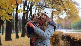 Девочка-подросток с малой собакой идет в парк осени видеоматериал