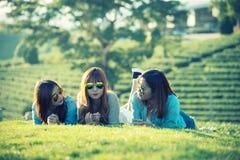 Девушка 3 Азия лежа на зеленой траве на ферме чая Стоковое Изображение
