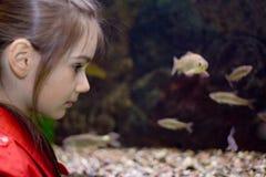 девушка аквариума Стоковые Изображения RF