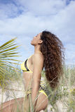 Девушка Бикини на пляже стоковая фотография rf