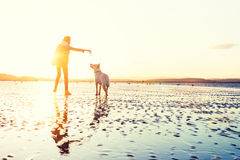 Девушка битника играя с собакой на пляже во время захода солнца, сильном пирофакеле объектива стоковое фото rf