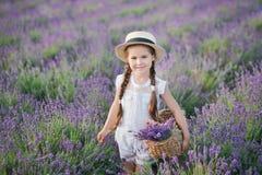 Девушка брюнет в соломенной шляпе держа корзину с лавандой Девушка брюнет с 2 оплетками в поле лаванды Милая девушка внутри Стоковые Фотографии RF