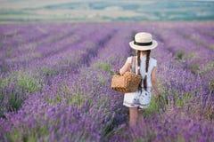 Девушка брюнет в соломенной шляпе держа корзину с лавандой Девушка брюнет с 2 оплетками в поле лаванды Милая девушка внутри Стоковые Изображения