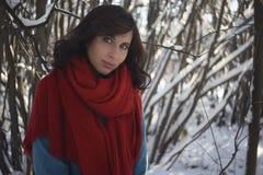 Девушка брюнет одела в красном шарфе и голубом пальто зимы Стоковое Фото