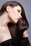 Девушка брюнет с здоровыми длинними волосами Стоковые Фотографии RF