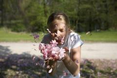 девушка вишни цветения дуя Стоковое Изображение
