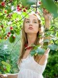 девушка вишни Стоковое Изображение