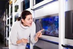 Девушка восхищает рыб Стоковое Изображение