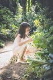 Девушка выбирает цветки в лесе Стоковое Фото