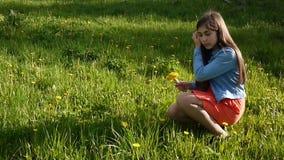 Девушка выбирая желтые одуванчики на луге Одуванчики прогулка весны пущи дня слободская Красивый усмехаясь парк подростка весной  акции видеоматериалы