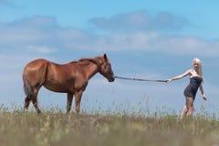 Девушка вытягивая gelding стоковое фото