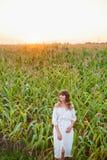 Девушка в белом платье Женщина в ниве, месте для текста Шип и девушка в поле Поздним летом и предыдущая осень aurelie стоковая фотография rf