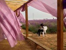 Девушка в ветре Стоковые Изображения